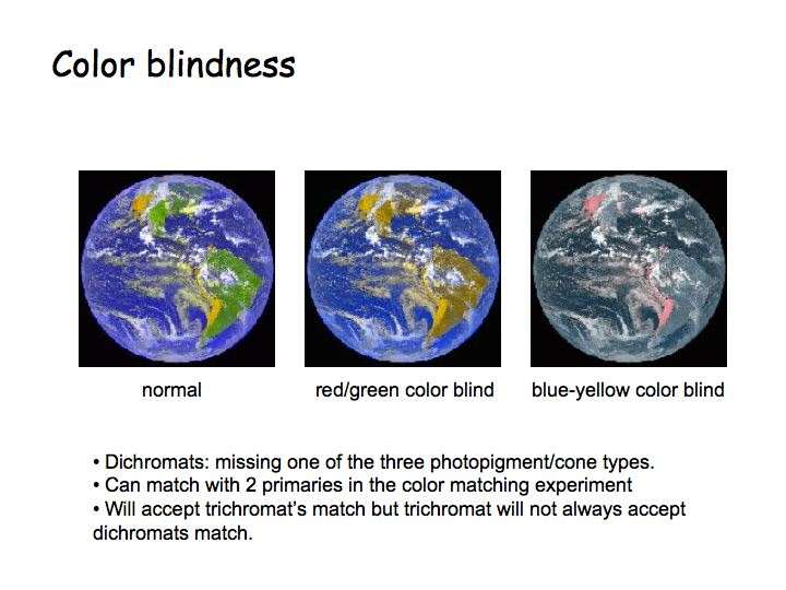 Try An Online Color Blindness Simulator To See What It Would Be Like Blind