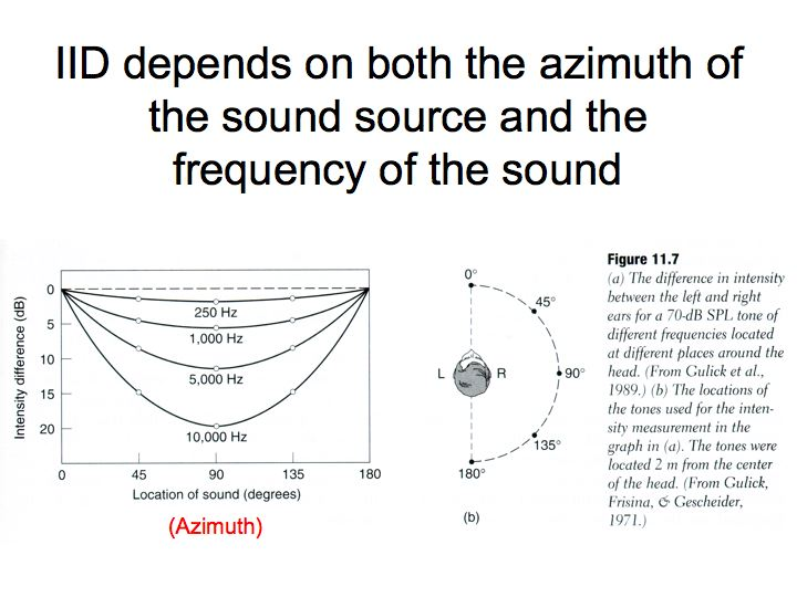 Perception lecture notes auditory pathways and sound localization sounds arriving from the right side also arrive at the right ear first because its closer this cue is especially easy to use with abrupt sounds ccuart Choice Image