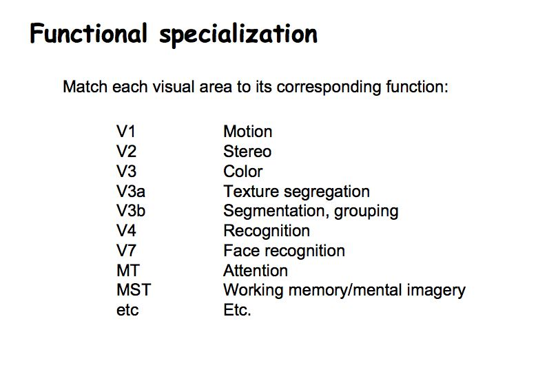 Perception Lecture Notes Cortical Visual Areas and Pathways
