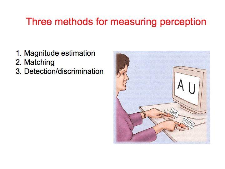 Perception Lecture Notes: Psychophysics